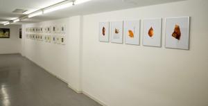 2015-Ausstellung-Visionen_0017a-hp
